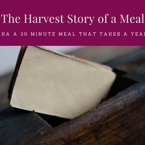 The Harvest Story of a Meal (AKA a 30 minute meal that takes a year)