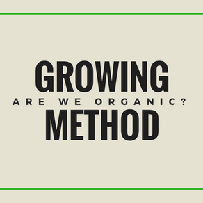Growing method, are we organic?