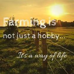 Farming Everyday