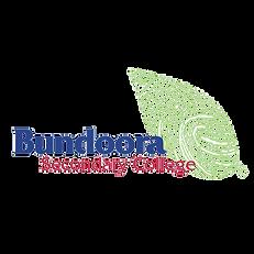 BSC-logo_500sq_transparent.png