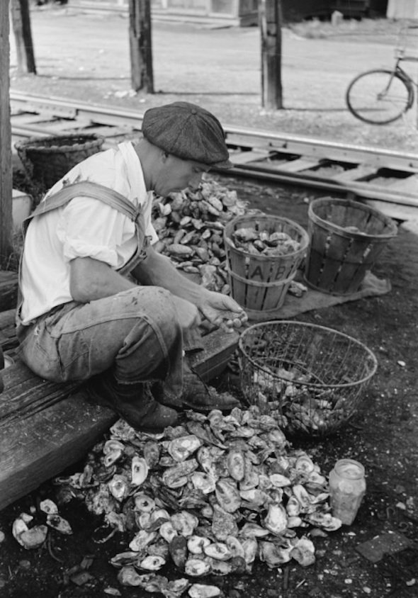 New-Jersey-shucker.jpg