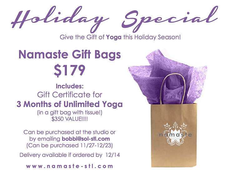 Namaste Holiday Special 2020.jpg