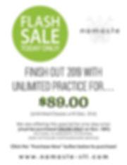 Flash Sale November Mailchimp.jpg