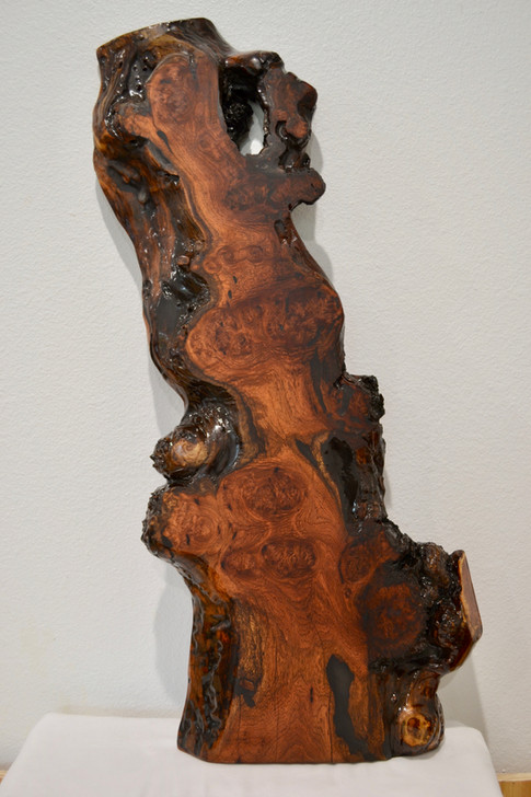 Burled Mesquite