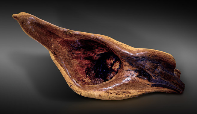 Carved Oak Burl Dove