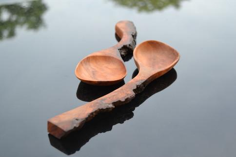 Pecan & Bark Spoon