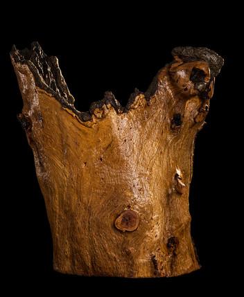 Pecan Sculpture