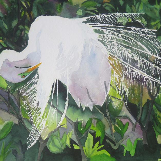 Pruning Egret