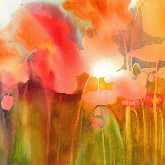 Poppin Poppies