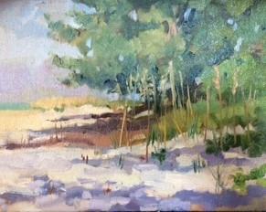 """""""Magnolia Beach"""""""