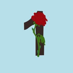 Number 1 - Rose