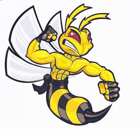 Wasp 1.jpg