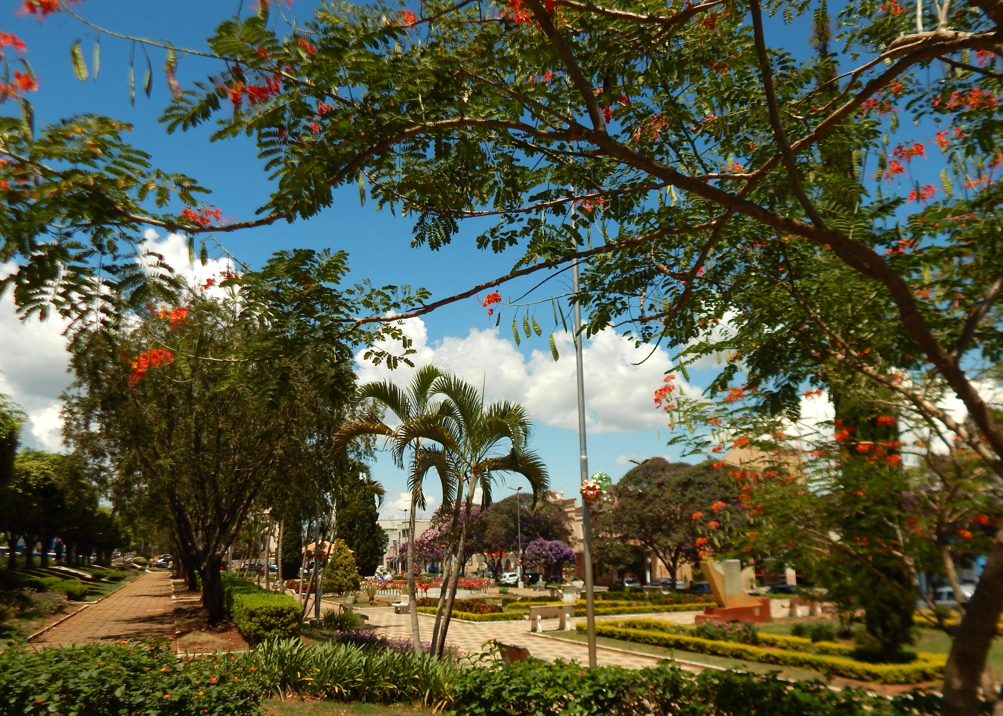 Oswaldo Costa Square, Paraguaçú