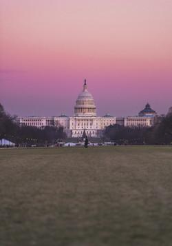 Pink DC