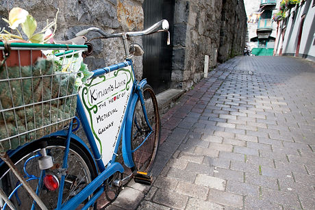 A bicycle outside Kirwan's Lane_master.j