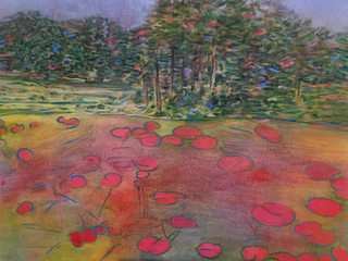 Pink Lily Pads