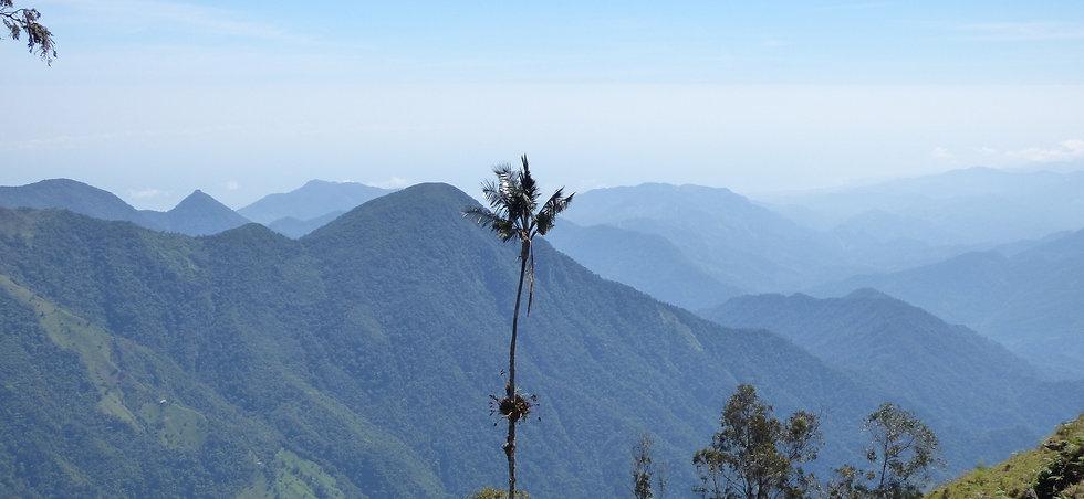 Vue sur les montagnes de la Sierra Nevada depuis le Cerro Kennedy