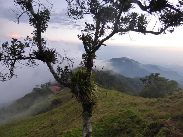 Vue sur la finca de Santa Elena dans la Sierra Nevada de Santa Marta