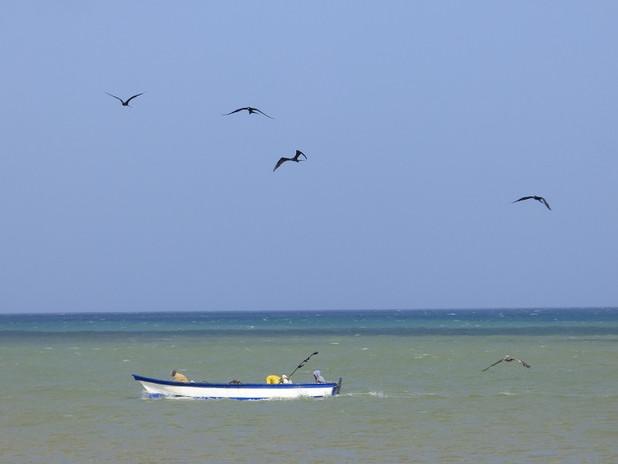 Pêche à La Guajira