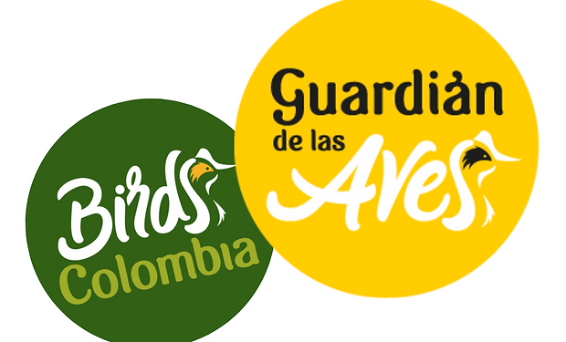 Birds Colombia y Guardian.png
