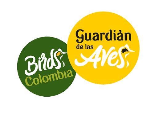 Birds_Colombia_y_Guardian-removebg-previ