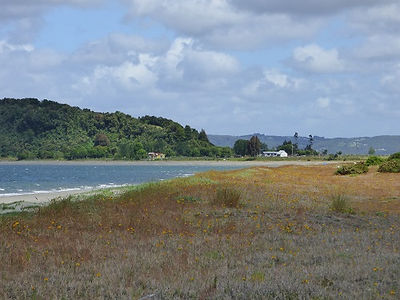 Plage à Isla Lemuy dans l'archipel de Chiloé