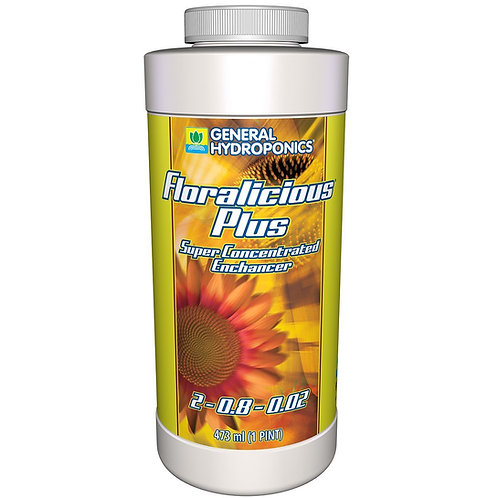 Floralicious Plus