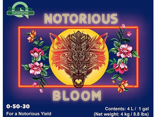 Notorious Bloom- Bloom Boost