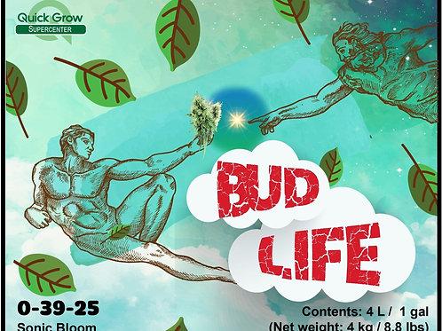 Bud Life- Flowers, Flowers, Flowers!