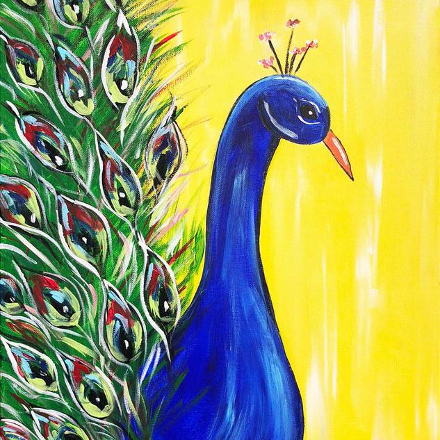 Peacock-Jax.jpg