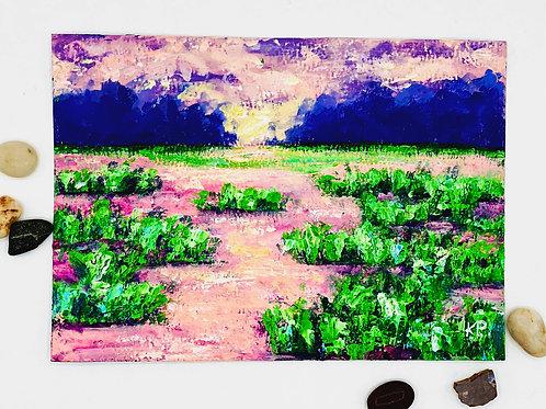 Sunrise Marsh 1