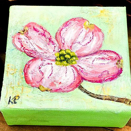Pink Dogwood 1