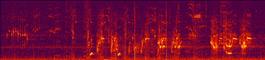 Spectrogram of Beluga Whale sonic activity captured in the Arctic ocean