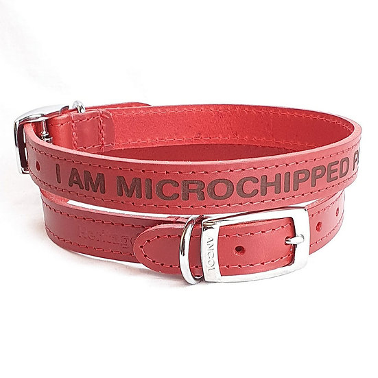 Microchipped please scan. Personalised Custom Leather Dog Puppy Collar Pet Id