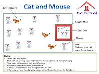 Cat and Mouse PE Game