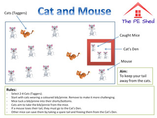 PE and Animals go paw in paw!