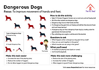 Dangerous Dogs PE Game and Warm Up