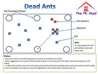 Dead Ants PE Tag Game