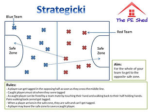 Strategicki PE Strategy Invasion Game and Activity