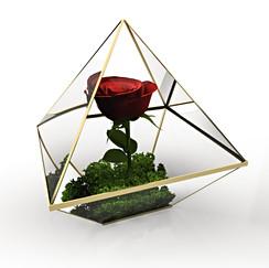 Luis Velasquez | 3D Design Artist