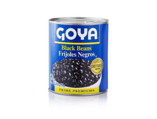 Goya copy.jpg