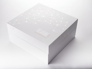TECHTURE_LED_MACHINE_BOX copy.jpg