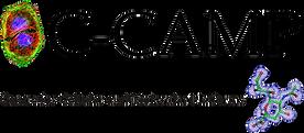 C-Camp_logo_wo_back.png