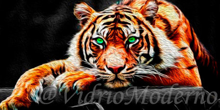 Tigre Ojos Verdes