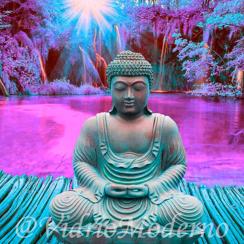 Buddha Morado