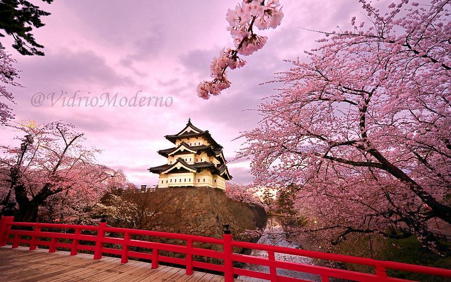 Jardín rosado