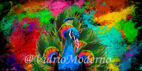 Pavo real colores