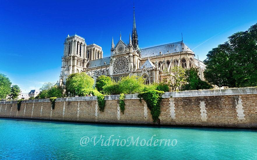 Catedral de Notre Dame. París