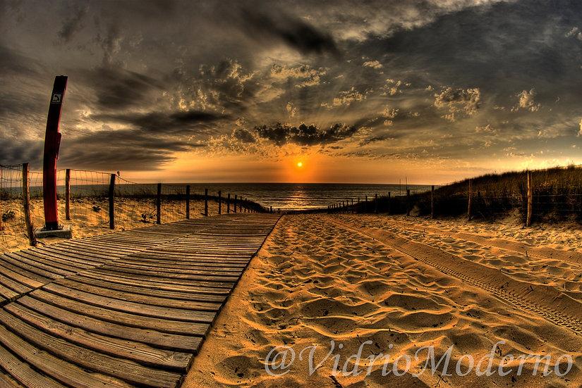 Playa 16