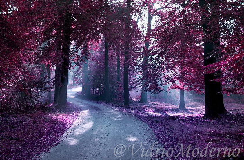 Bosque Morado